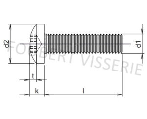 Plan-vis-metaux-tete-cylindrique-bombee-large-torx-iso14583