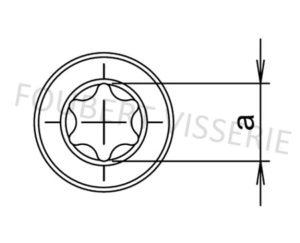 Empreinte-Vis-metaux-tete-basse-torx-czx